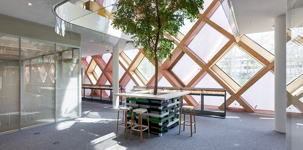 Swatch HQ ground floor view on tree